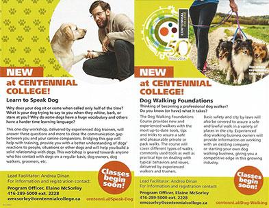 NEW - Centennial College - Dog Walking Course and Speak Dog Workshop!