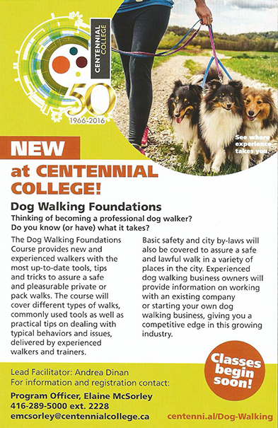 NEW - at Centennial Collage .... Dog Walking Foundations