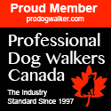 Professional Dog Walkers Canada - Square Banner - Proud Member