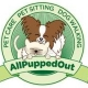 All Pupped Out Dog Walking & Pet Sitting Service