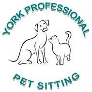 York Professional Pet Sitting and Dog Walking