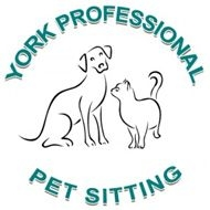York Professional Pet Sitting and Dog Walking